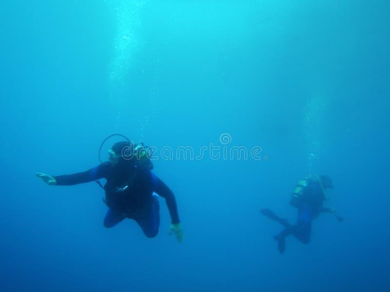 小组潜水者水下的背景 免版税库存照片
