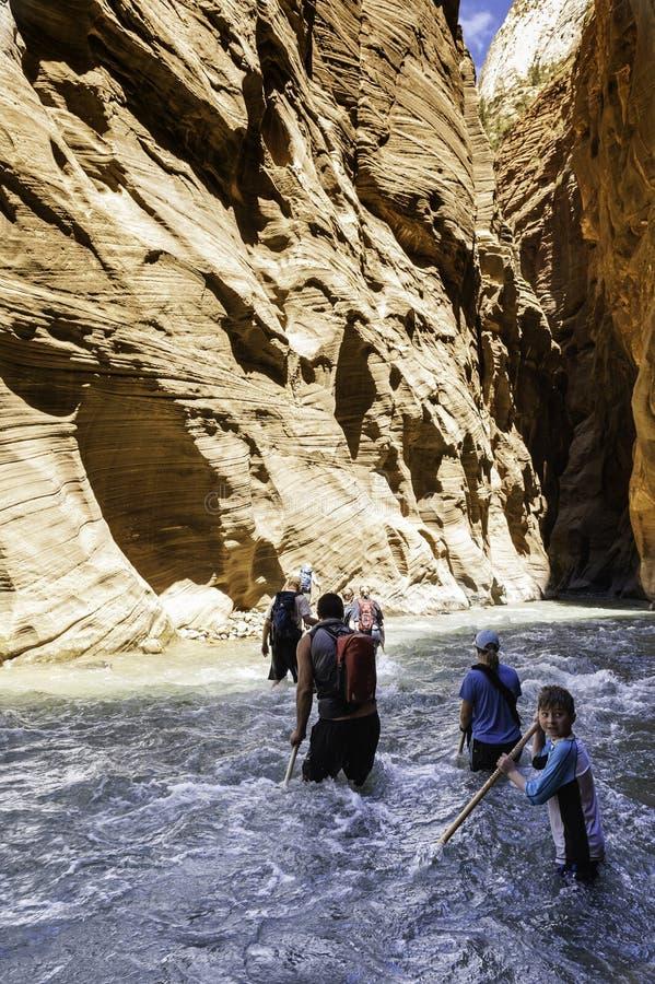 小组狭窄的峡谷的游人在锡安 图库摄影