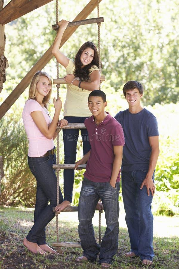 小组由树上小屋的少年朋友 库存图片