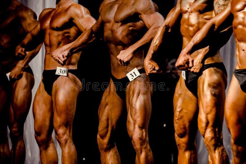 小组运动员爱好健美者 免版税库存照片