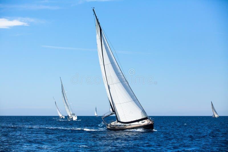 小组风帆在赛船会乘快艇打开海 在航行赛船会的小船 免版税库存图片