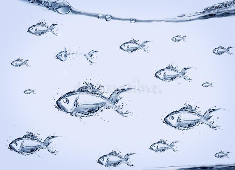 小组水鱼游泳 图库摄影