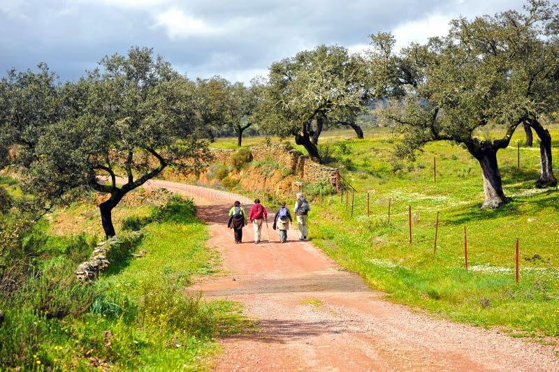 小组Camino的de圣地亚哥,西班牙,通往圣地亚哥的道路香客 图库摄影