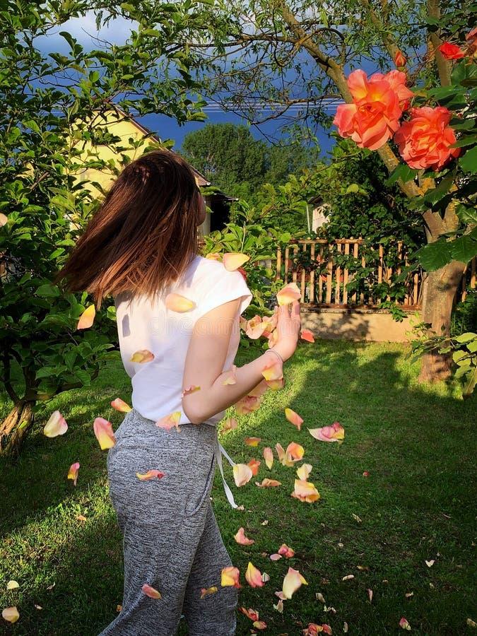 少女在玫瑰园里 免版税库存图片