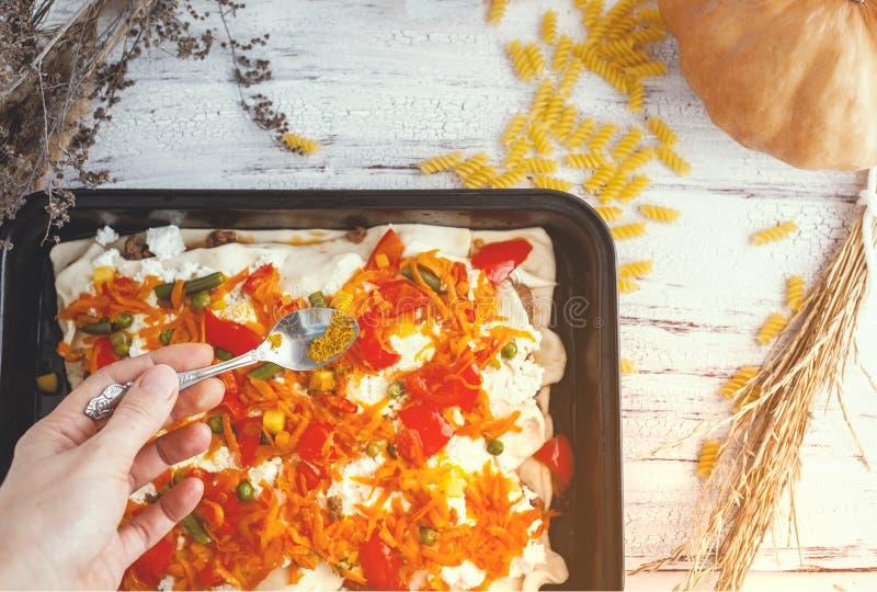 少妇准备食物、鲜美菜和肉 免版税图库摄影