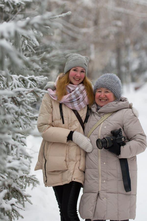 少妇和成年女性在冬天停放-站立在积雪的杉木附近 库存照片