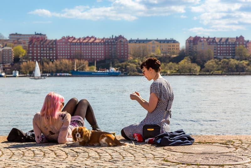 少妇和狗在码头 免版税库存照片