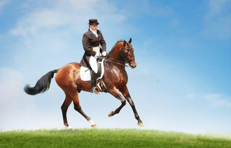 少妇在小山的上面的骑乘马 骑马spor 免版税图库摄影