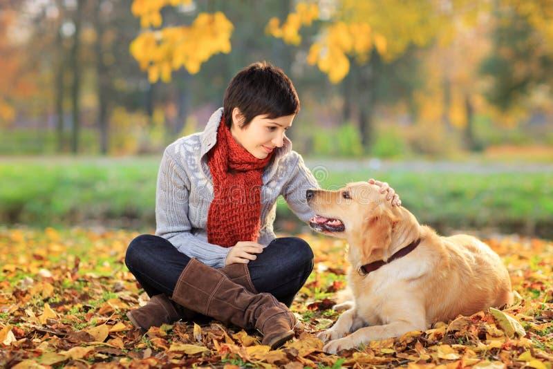 少妇在抚摸她的狗的公园 免版税库存图片
