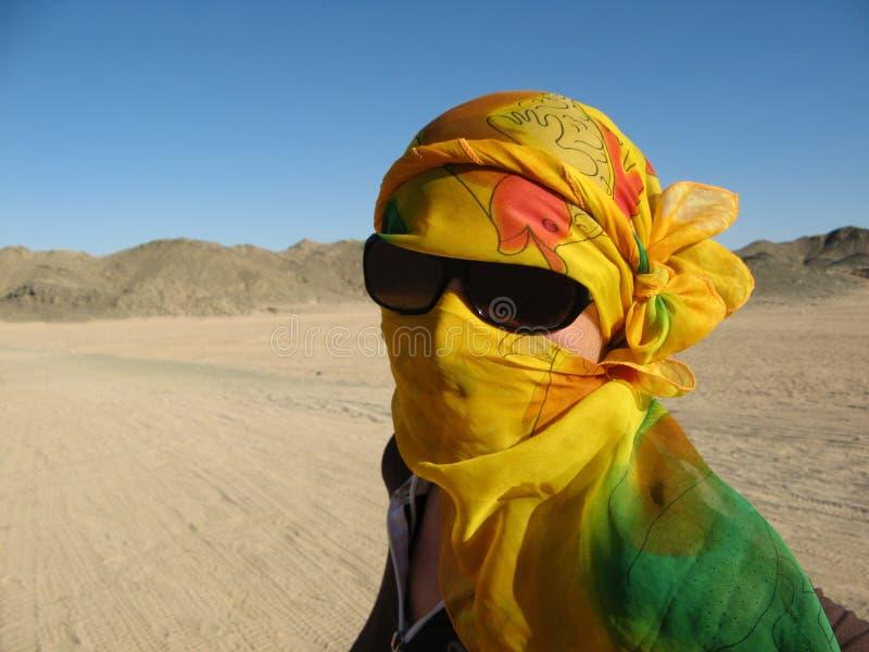 少妇在沙漠 库存照片
