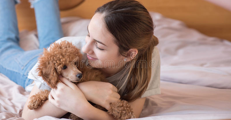 少妇是说谎和睡觉与狮子狗在床上 图库摄影