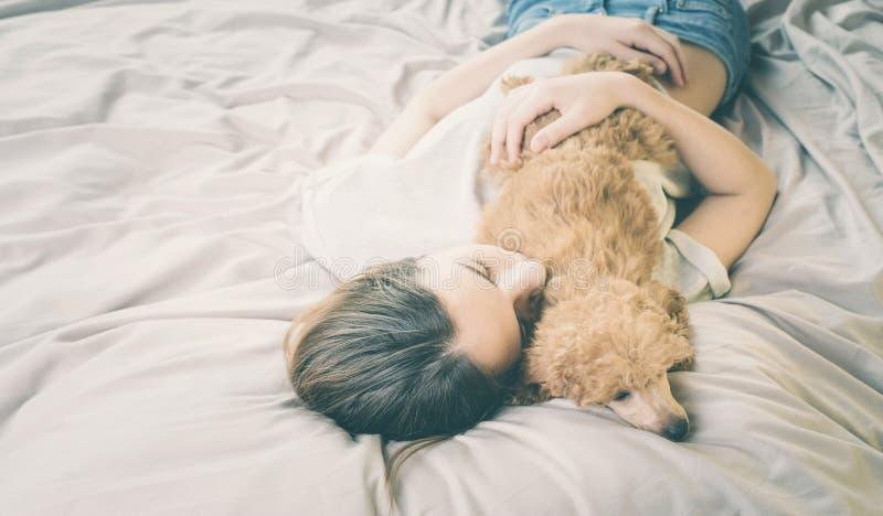 少妇是说谎和睡觉与狮子狗在床上 免版税库存图片