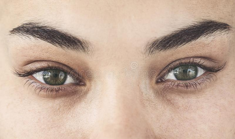 少妇的布朗眼睛 库存照片
