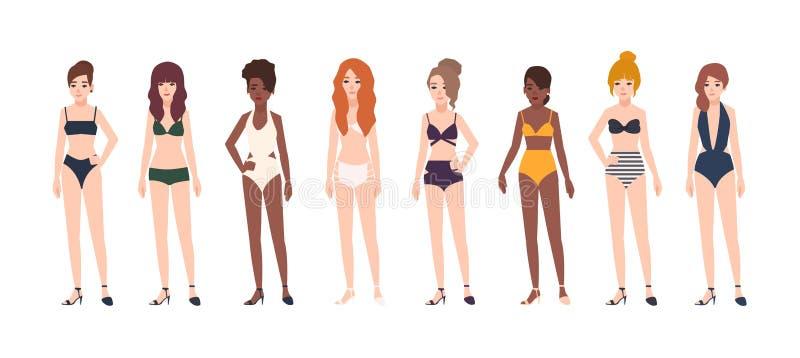 少妇的汇集在白色背景隔绝的游泳衣穿戴了 穿泳装的套美丽的女孩 皇族释放例证