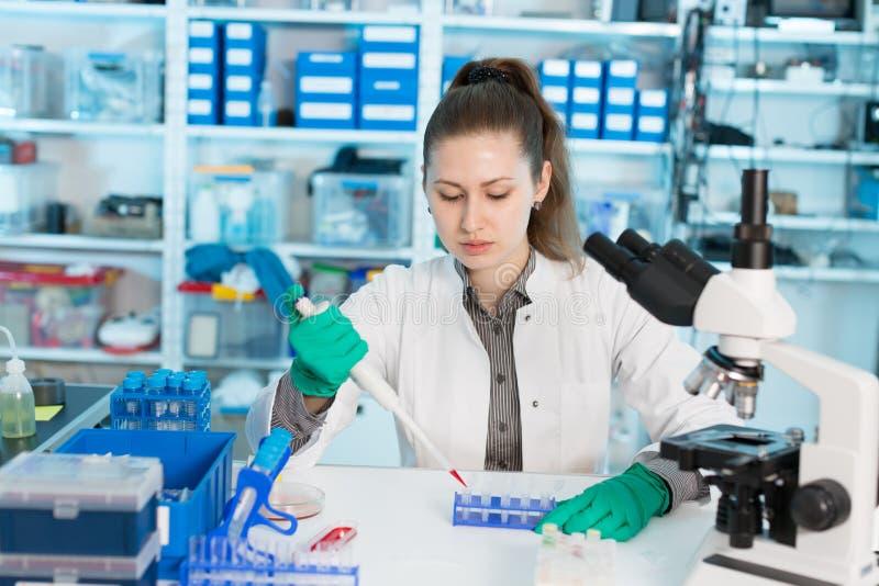 少妇科学专业吸取的解答到玻璃测试里 免版税库存图片