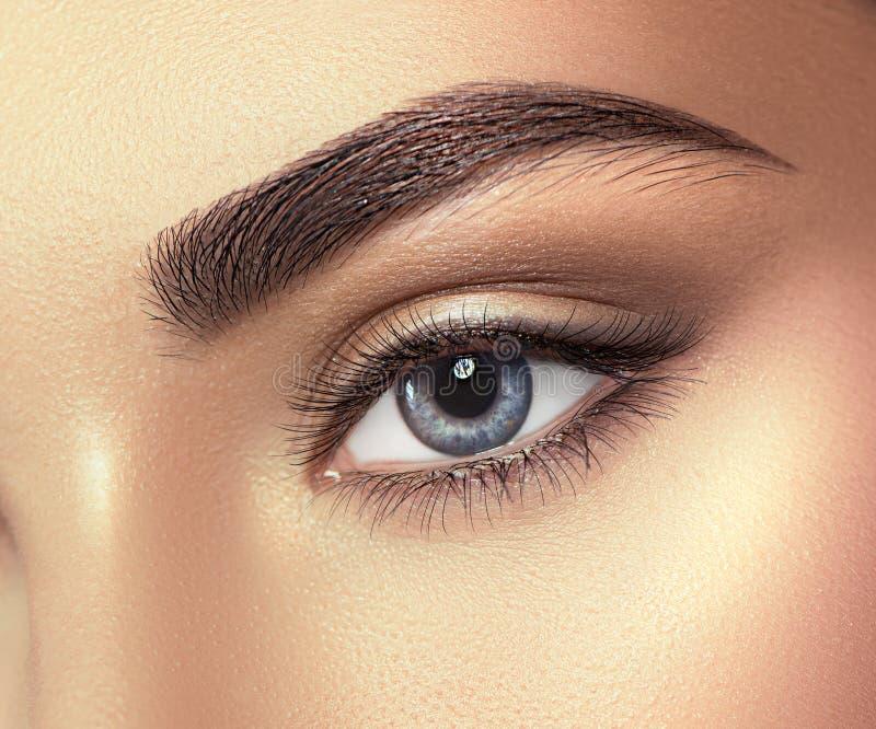 少妇蓝眼睛特写镜头 查寻宏观的眼睛,隔绝在白色 免版税库存照片