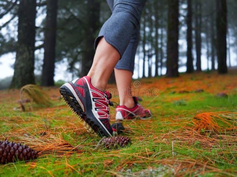少妇远足的脚 旅行和冒险的概念 免版税图库摄影