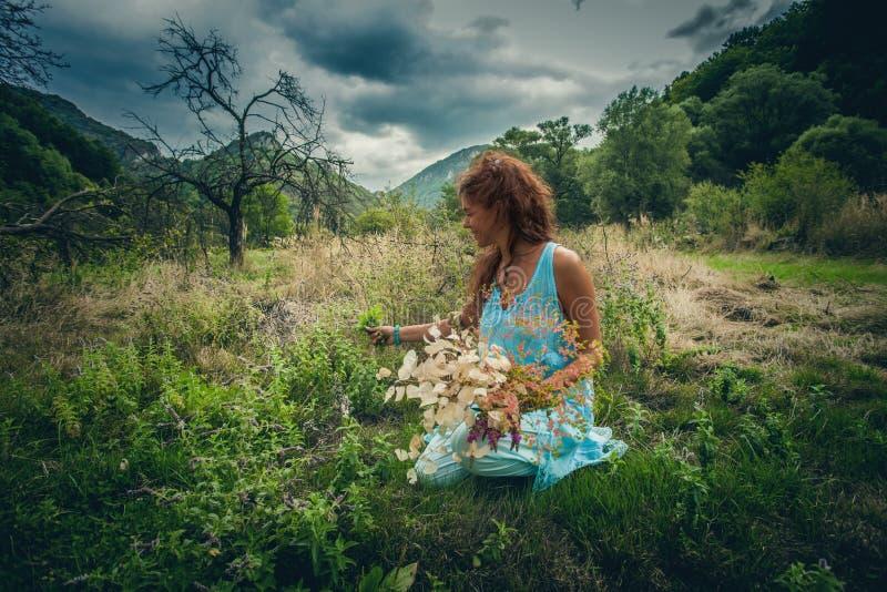 少妇采撷草本和花在干净的狂放的山草甸 免版税库存图片