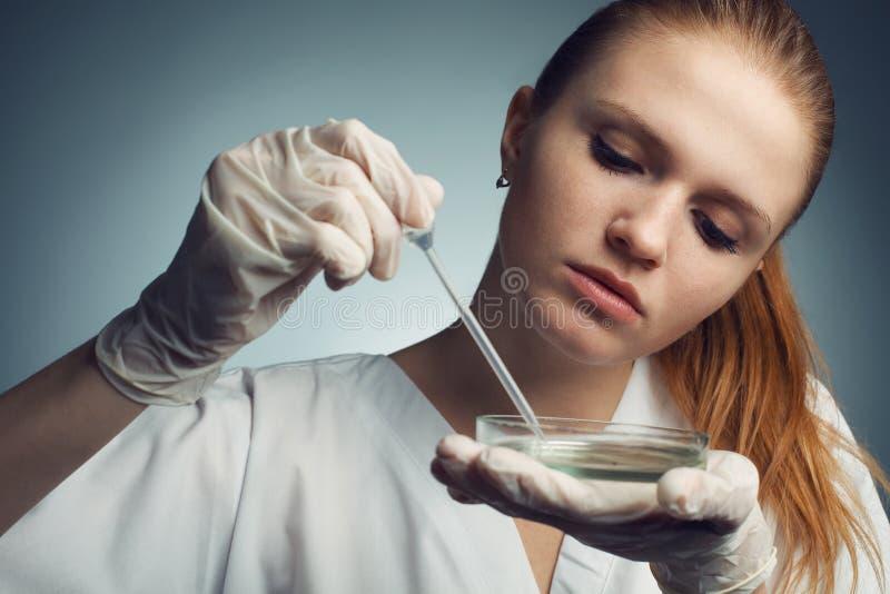 少妇-有吸管工作的科学家画象  图库摄影