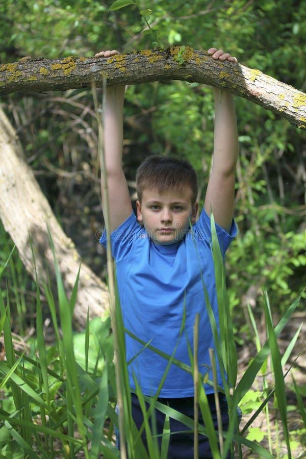 少年为摄影师摆在,当走在公园时 垂悬,抓住树喜欢标志横线 免版税库存图片