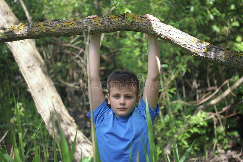 少年为摄影师摆在,当走在公园时 垂悬,抓住树喜欢标志横线 图库摄影