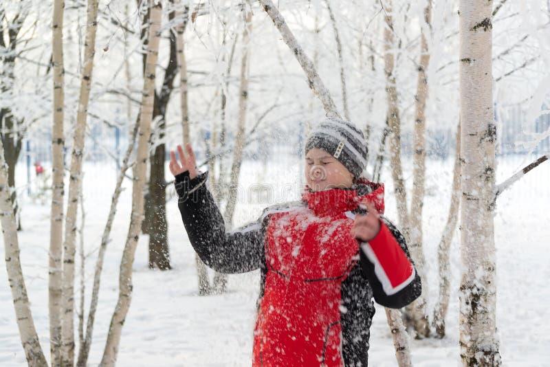 少年男孩在冬天公园 库存图片