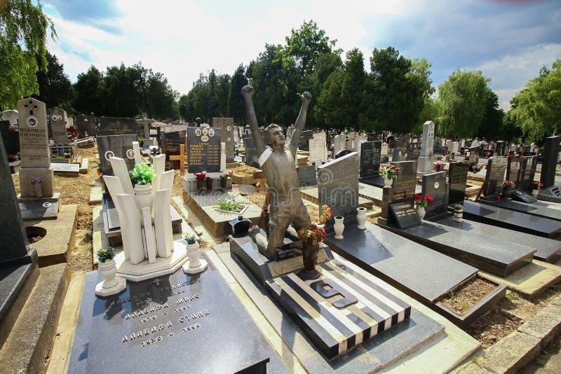 贝尔格莱德孩子公墓 免版税库存图片