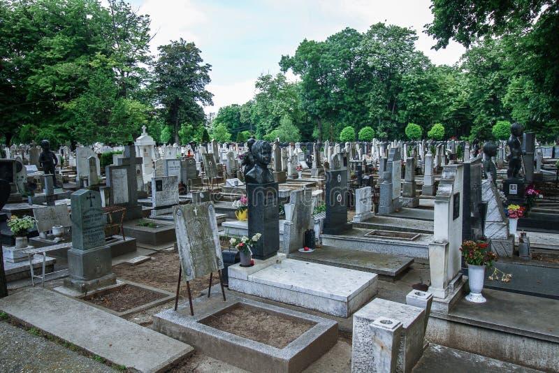 贝尔格莱德孩子公墓 图库摄影