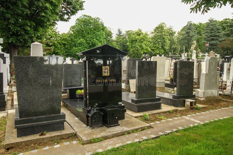 贝尔格莱德孩子公墓 库存图片