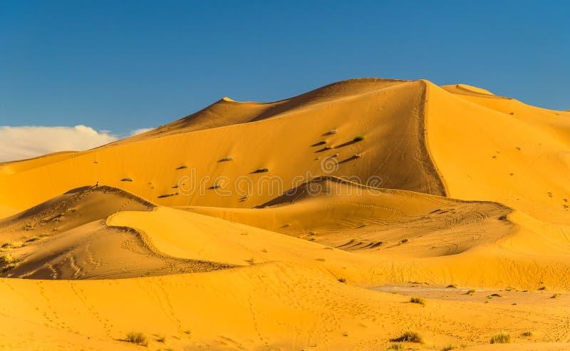 尔格Chebbi沙丘在Merzouga附近的在摩洛哥 库存照片