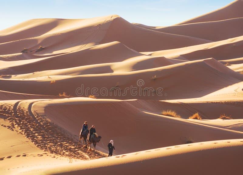尔格Chebbi沙丘在Merzouga附近的撒哈拉大沙漠在早期的晴朗的早晨,摩洛哥 在传统礼服的巴巴里人男性指南 免版税库存照片
