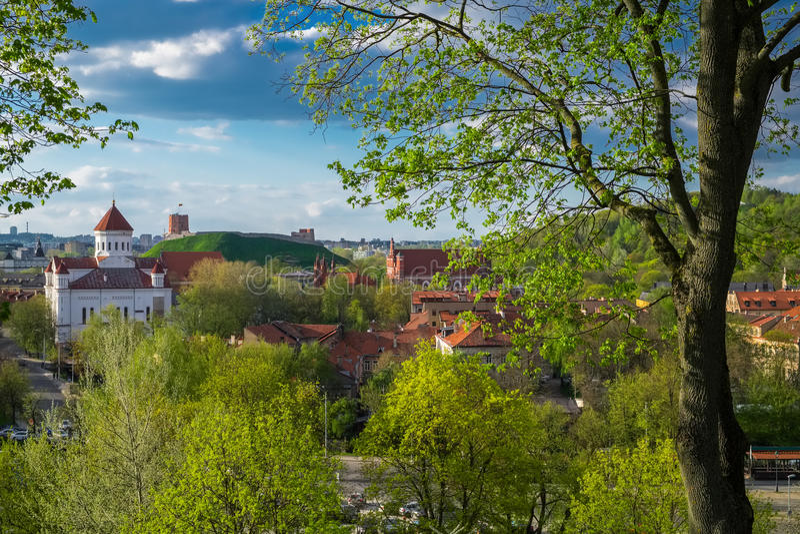 维尔纽斯,立陶宛老镇的全景  库存图片
