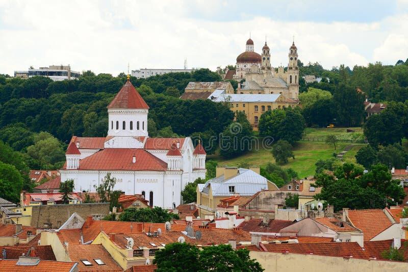 维尔纽斯从大教堂钟楼的市视图在大教堂放 免版税图库摄影