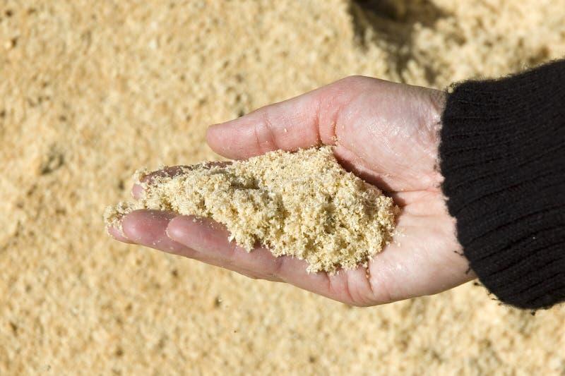尘土现有量藏品看见了 免版税库存图片