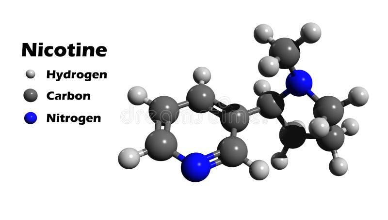 尼古丁3D结构 向量例证