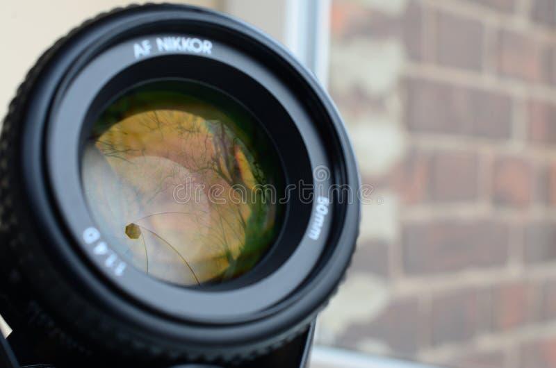 尼康AF NIKKOR 50mm 1 4D摄影透镜关闭 免版税库存图片