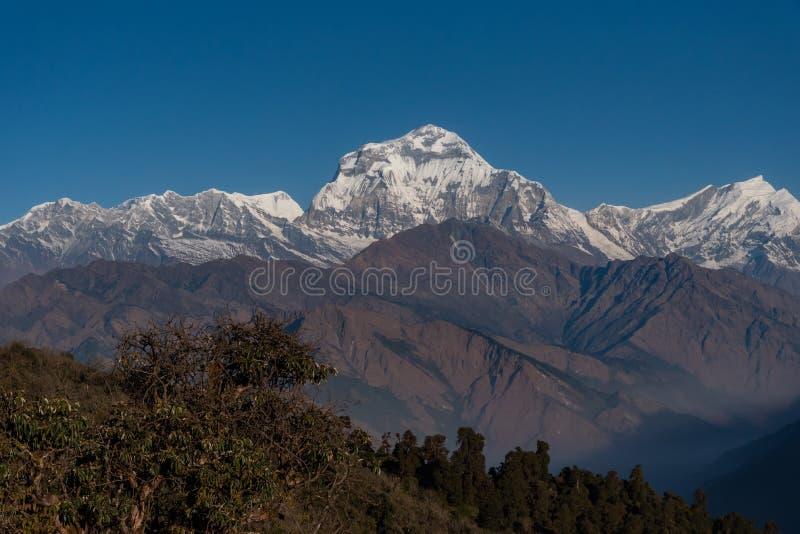 尼泊尔七高的Dhaulagiri山脉雄伟的景色 免版税库存图片