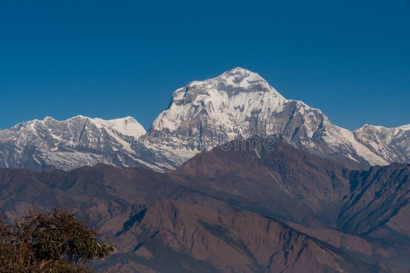 尼泊尔七高的Dhaulagiri山脉雄伟的景色 库存照片