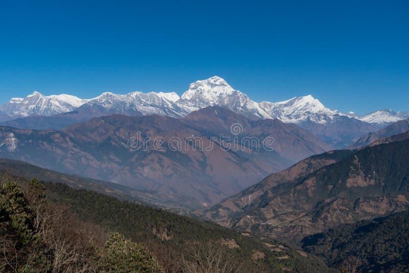 尼泊尔七高的Dhaulagiri山脉雄伟的景色 免版税库存照片