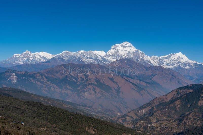 尼泊尔七高的Dhaulagiri山脉雄伟的景色 库存图片