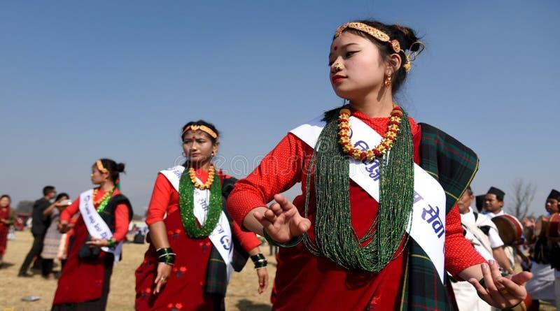 尼泊尔夫人` S 库存图片