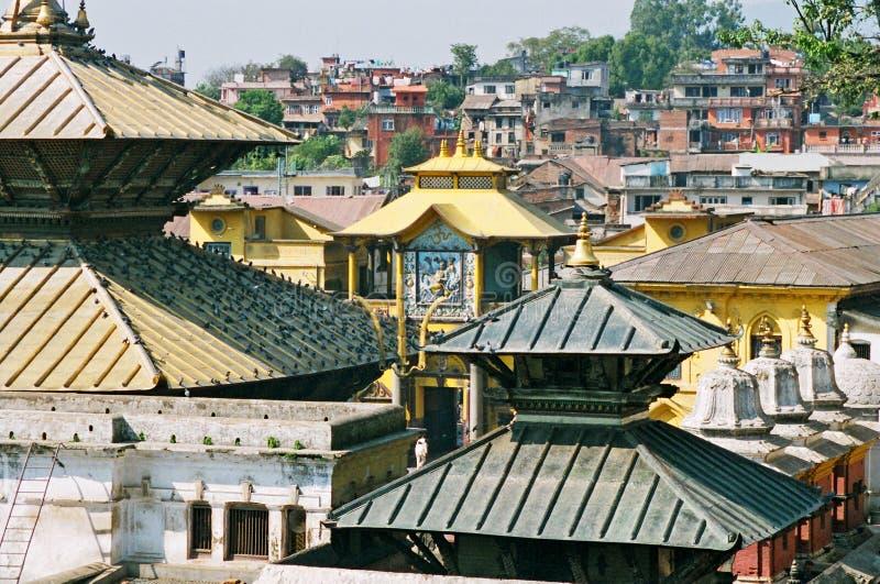 尼泊尔pashupatinath shiva 库存照片
