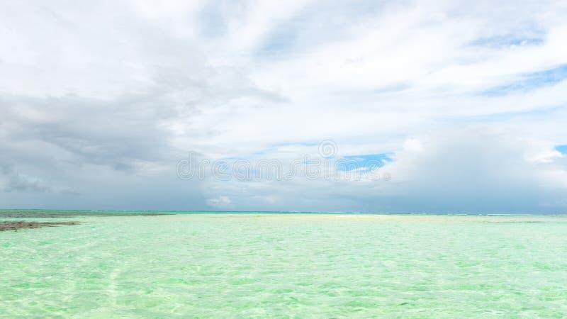 尼龙水池清楚的海水覆盖物珊瑚和白色沙子全景的多巴哥旅游胜地浅深度 免版税库存照片