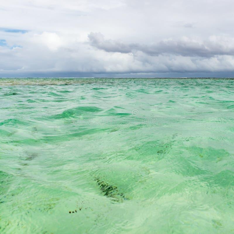 尼龙水池清楚的海水覆盖物珊瑚的多巴哥旅游胜地浅深度和白色沙子全景摆正 库存照片