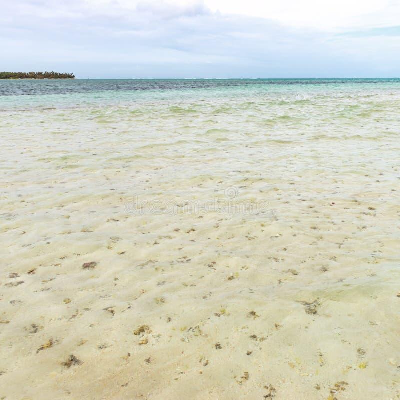 尼龙水池清楚的海水覆盖物珊瑚的多巴哥旅游胜地浅深度和白色沙子全景摆正 免版税库存照片