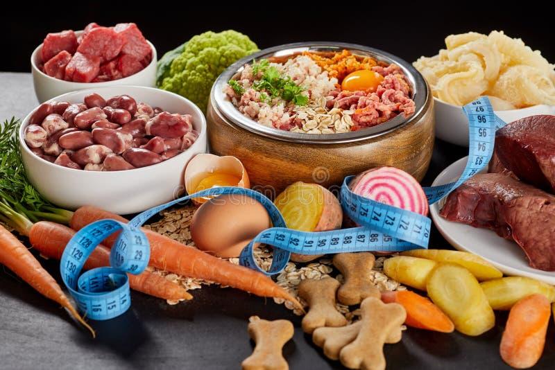 尾随与未加工的barf的饮食和减肥概念 免版税库存图片