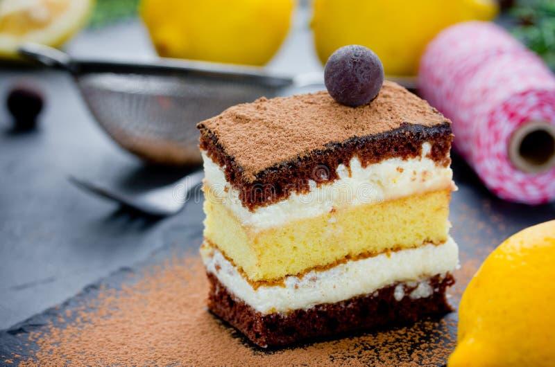层数块菌状巧克力柠檬蛋糕片断  可口海绵加州 免版税图库摄影