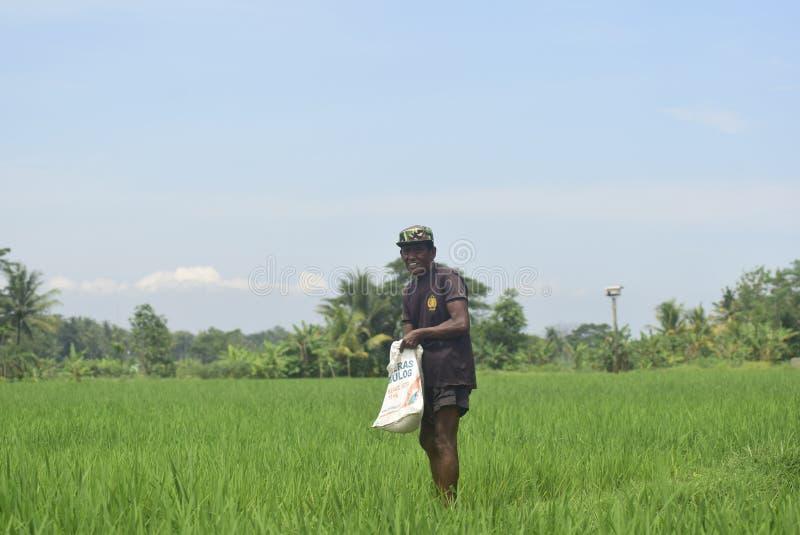 居民给从BULOG的肥料用途津贴 免版税库存照片