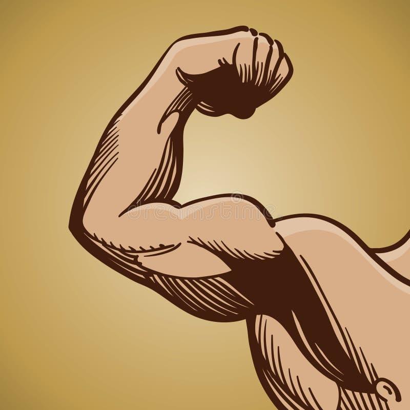 屈曲人肌肉的胳膊 皇族释放例证