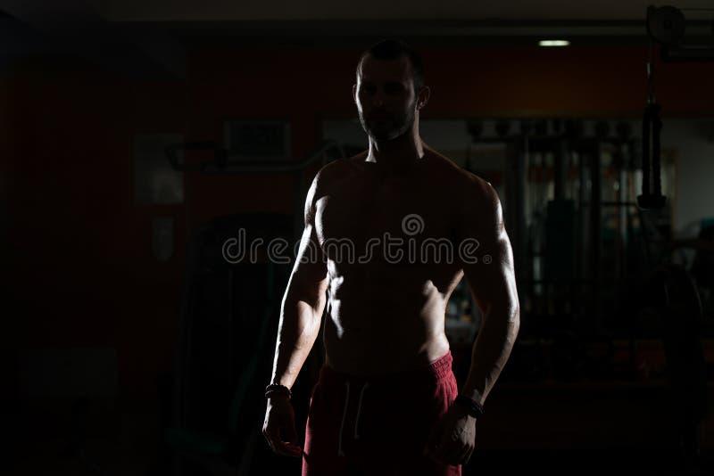 Download 屈曲肌肉的Siluet年轻人 库存图片. 图片 包括有 屈曲, 人员, 成人, 体操, 运动员, 设计, 确信 - 62532963